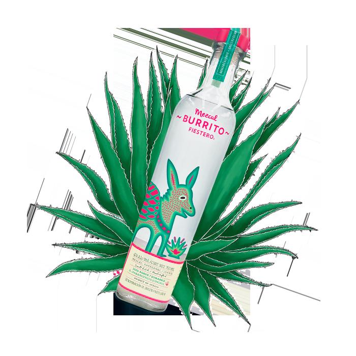 http://mezcalburrito.com/wp-content/uploads/2020/05/Burrito_Fiestero_Philosophy_Bottle.png