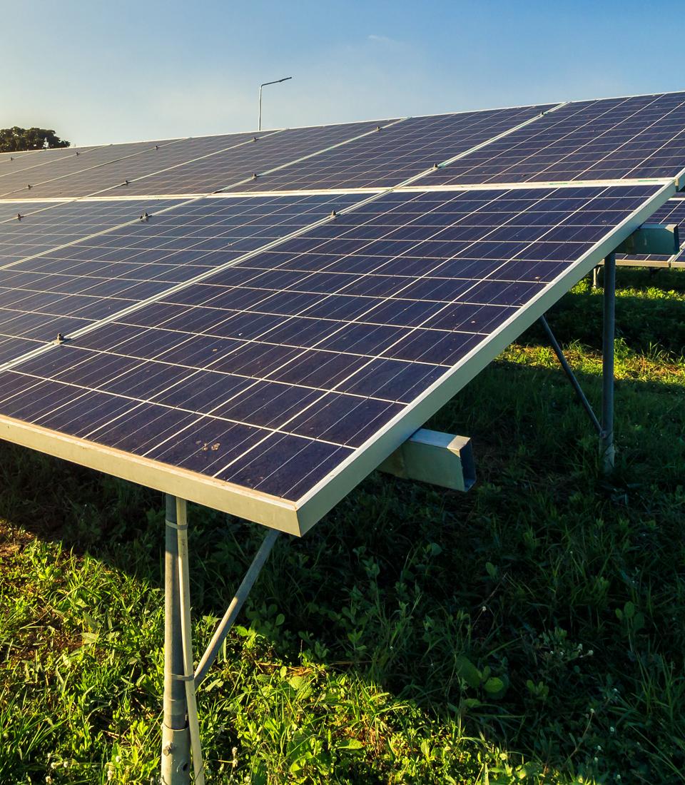 http://mezcalburrito.com/wp-content/uploads/2020/05/Burrito_OurPhilosophy_RenewableEnergy.jpg