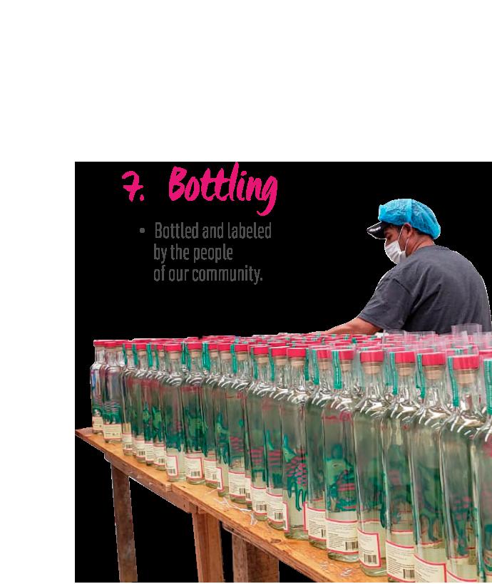 http://mezcalburrito.com/wp-content/uploads/2020/06/BurritoFiestero_Process_Bottling.png