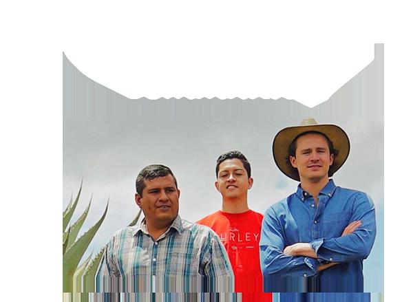 https://mezcalburrito.com/wp-content/uploads/2020/05/BurritoFiestero_Community.png